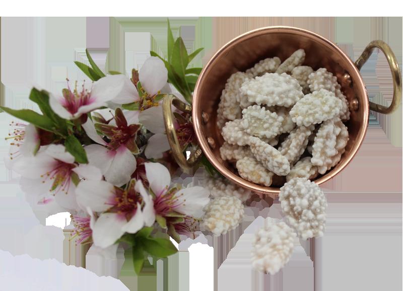 Pot d'amandes de Pâques du Portugal avec fleur d'amandiers